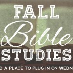 Fall Studies Web Banner (2)