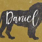 daniel-web-banner